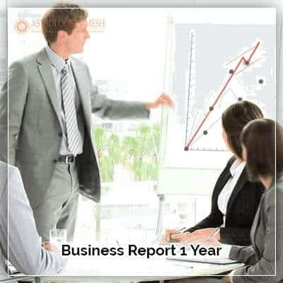 Business Report 1 Year
