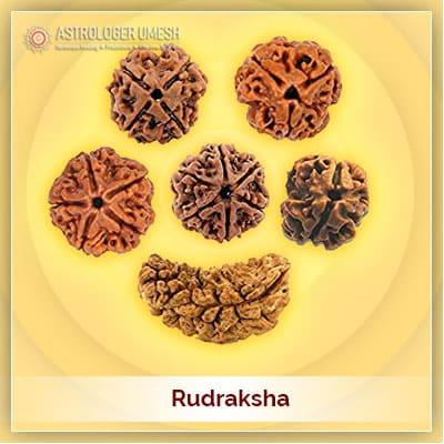 Original Nepali Real Rudraksha